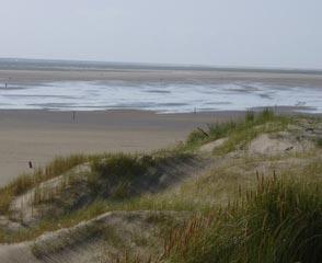 Duin en kustlandschap